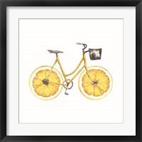 Framed Lemon Bike