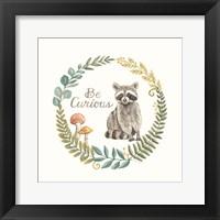 Framed Be Curious Raccoon