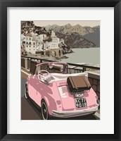 Framed Pink Bug in Europe