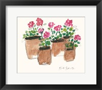 Framed Geranium Sunday