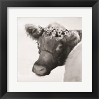 Framed Brown Cow with Flowers