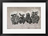 Framed Polish Chickens