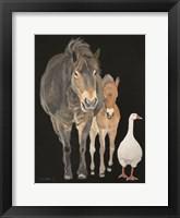 Framed Farmyard Trio