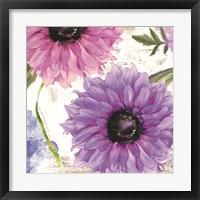 Framed Purplette