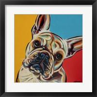 Framed Chroma Dogs III