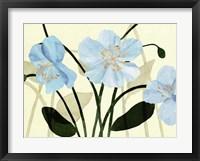 Framed Blue Poppies I