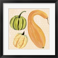 Decorative Gourd I Framed Print