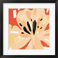 Boomin' Bloom II Framed Print