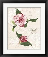 Dianne's Camelias II Framed Print