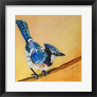 Framed Blue Jay Blessing