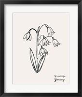Annual Flowers I Framed Print