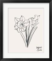 Annual Flowers III Framed Print
