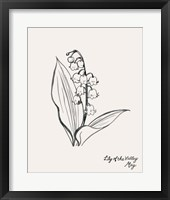 Annual Flowers V Framed Print