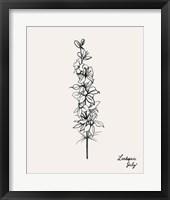 Annual Flowers VII Framed Print