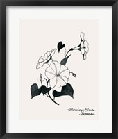 Framed Annual Flowers IX