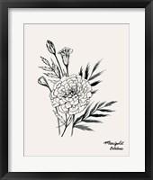 Framed Annual Flowers X
