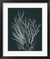 Framed Underwater Bouquet I