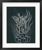 Framed Underwater Bouquet II