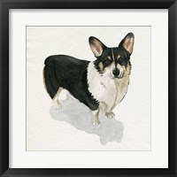 Framed Pup for the Queen I