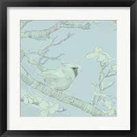 Backyard Bird Sketch I Framed Print