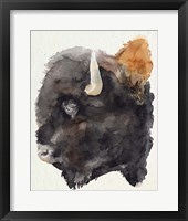 Watercolor Bison Profile II Framed Print