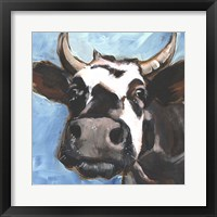 Cattle Close-up II Framed Print