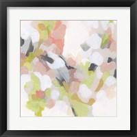 Dogwood Prism IV Framed Print