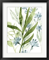 Meadow Blues II Framed Print