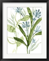 Meadow Blues III Framed Print