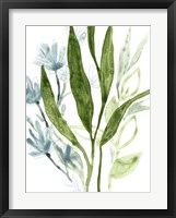 Meadow Blues IV Framed Print