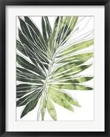 Expressive Palm I Framed Print