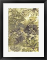 Framed Eco Print I