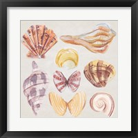 Ocean Sounds II Framed Print