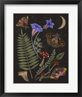 Dark Forest II Framed Print