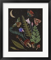 Dark Forest III Framed Print