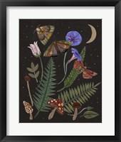 Dark Forest IV Framed Print
