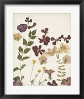 Framed Pressed Flower Arrangement V