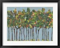 Sunset Trees I Framed Print