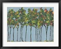 Sunset Trees II Framed Print