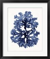 Indigo Ocean I Framed Print