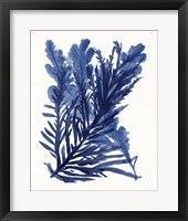 Indigo Ocean III Framed Print