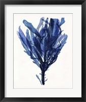 Indigo Ocean IV Framed Print