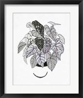 B&W Indoor Plant I Framed Print