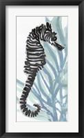 Zebra Seahorse I Framed Print