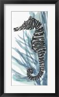 Zebra Seahorse II Framed Print
