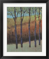 Glimmer in the Forest II Framed Print