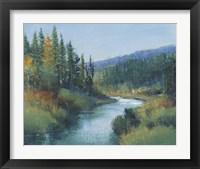 Trout Stream I Framed Print