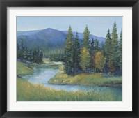 Trout Stream II Framed Print