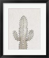 Cactus Study I Framed Print