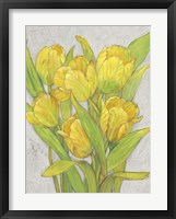 Yellow Tulips I Framed Print